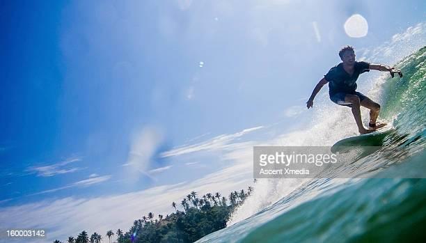 Man surfs waves on sunlit sea, palm lined beach