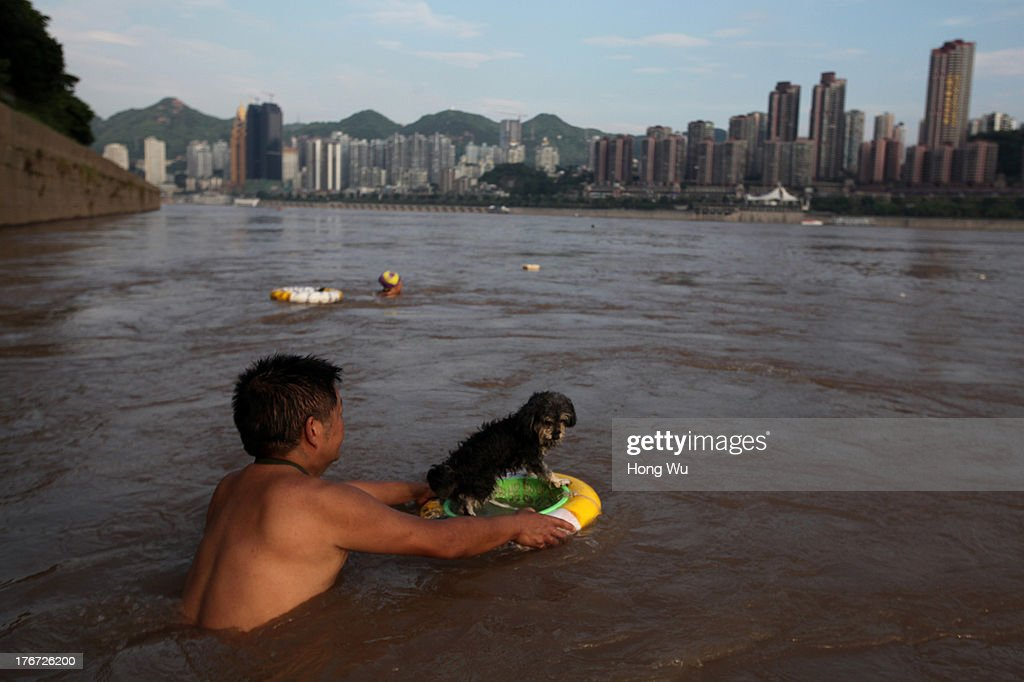 A man swims with his dog in the Yangtze River on August 4, 2013 in Chongqing, China. Chongqing is a major city in southwest China and became the municipality was created on 14 March 1997. It known as a 'Mountain City' and 'River City' was constructed on the mountain and along the Yangtze River.