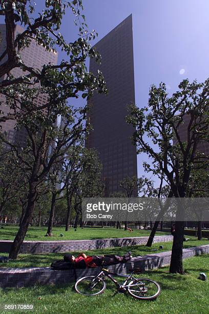 A man takes a nap next to his bicycle in the shade of trees next to high rises on the 300 block of Hope St during balmy weather in Downtown LA