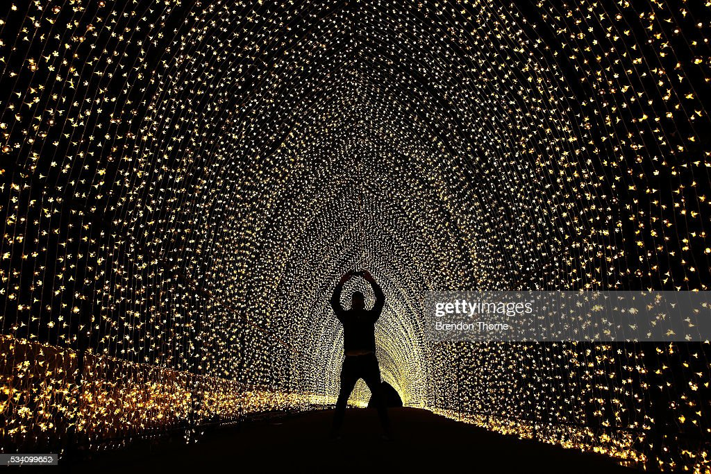 A man takes a photo inside the 'Cathedral of Light' at The Royal Botanic Gardens on May 25, 2016 in Sydney, Australia. Held annually, Vivid Sydney is the world's largest festival of light, music and ideas.