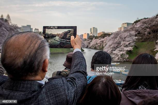 A man takes a photograph with his Ipad of blooming cherry blossom trees at Chidorigafuchi on March 31 2015 in Tokyo Japan The Cherry blossom season...