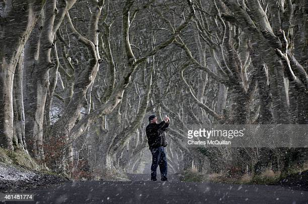 A man takes a picture with his mobile phone through heavy snow at the Dark Hedges on January 13 2015 in Antrim Northern Ireland The Dark Hedges named...