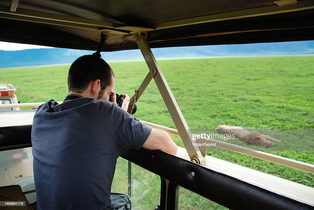 Man taking a picture of a lion, Ngorongoro safari