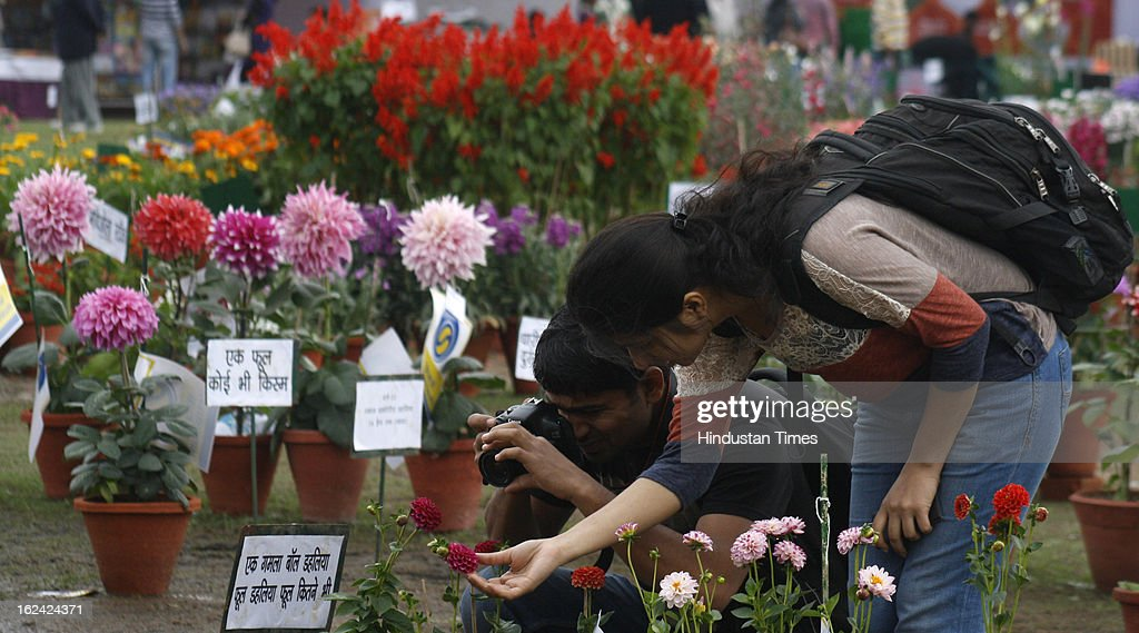 A man taking pictures of the flowers on the 2nd day of the 27th Flower Show organised by 'The Floriculture Society of Noida' at Sector 21A on February, 23, 2013 in Noida, India. The annual flower show was opened for general public on Feb. 22 & will conclude on Feb. 24.