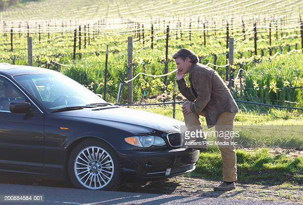 Man talking on cell phone, leaning on car by vineyard, side view