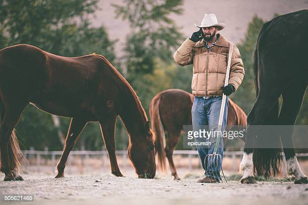 Man talks on cell phone while working in horse pasture