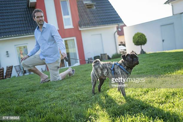 Man teaching pug in the garden behind the house