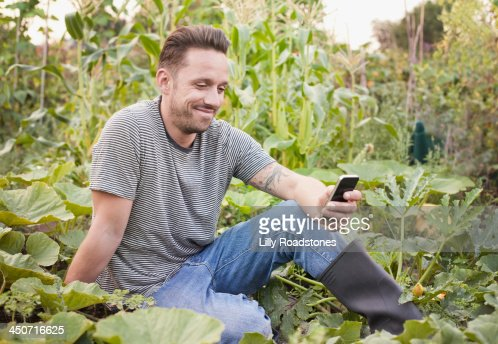 Man texting sat in allotment : Stock Photo