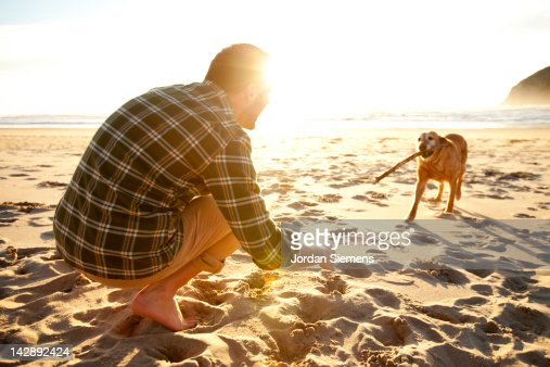 Man throwing a stick for his dog. : Stock Photo