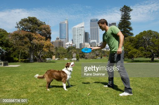 Man throwing flying disc for border collie, side view