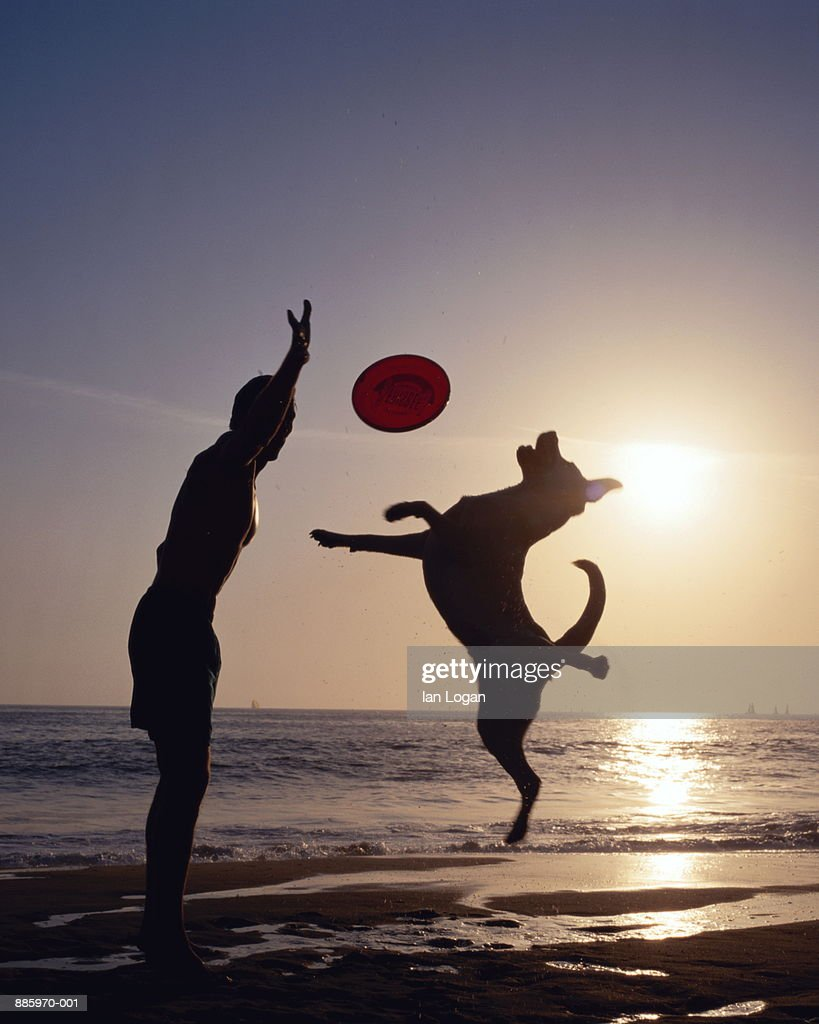 Man throwing sports disc to dog on beach, silhouette