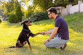 Man training a dog
