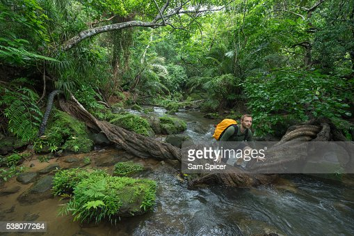 Man trekking through dense tropical Jungle scenery