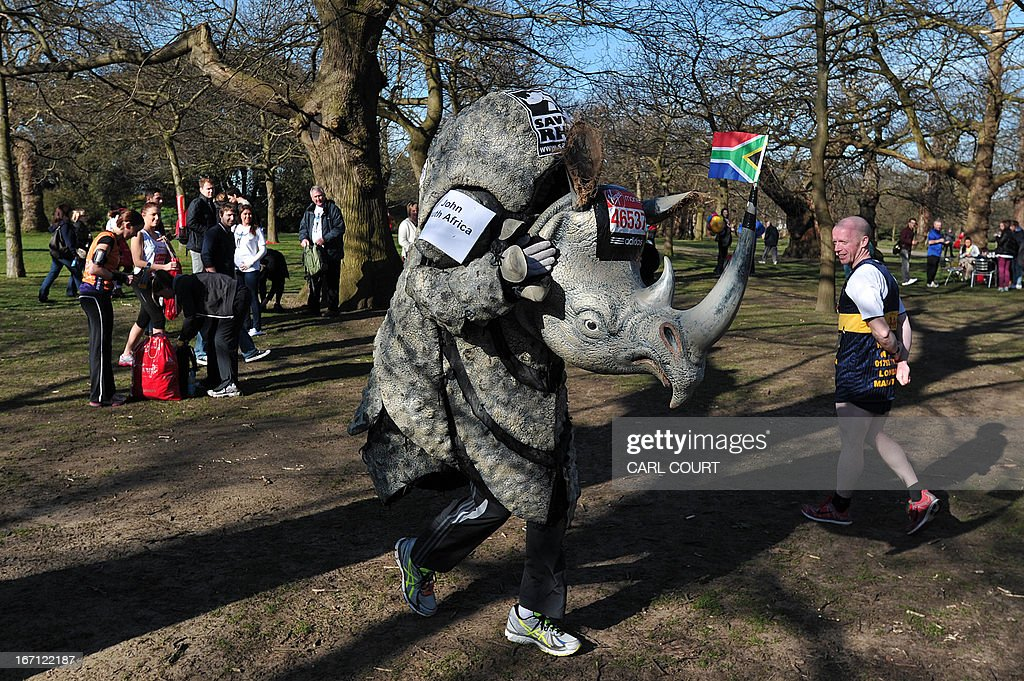 A man tries out a rhino costume with a South African flag on the horn in Greenwich Park in southeast London on April 21, 2013 ahead of the 2013 London Marathon.