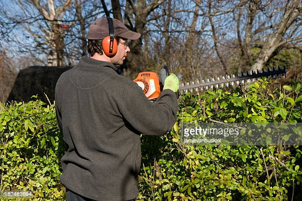 Man Trims Hedge Wearing Safety Equipment