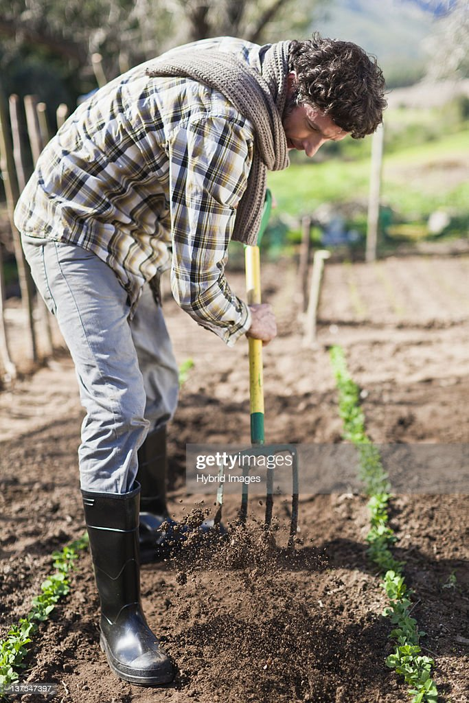 free soil single men The free soil party was founded to help prevent family farm being the backbone of the nation their slogan was, free soil free speech free men a single.