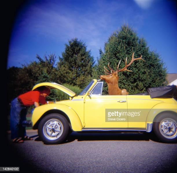 Man under a yellow car hood