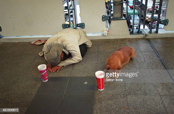 A man uses his dog as an endearing and novel way to improve his income from begging