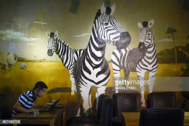 A man uses his laptop at a zoothemed cafe in Beijing on July 4 2017 / AFP PHOTO / WANG Zhao