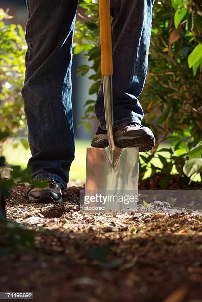 Uomo utilizzando una paletta per scavare