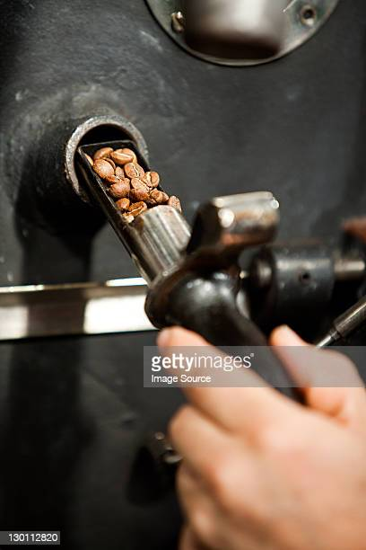 Man using coffee grinder, close up of coffee beans