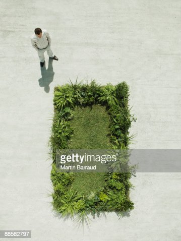 Man viewing lush lawn in cement courtyard : Stock Photo
