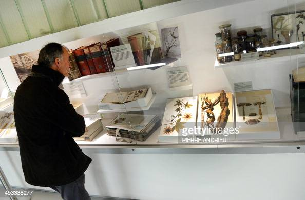 A man visits an exhibition during the inauguration of the new botanic gallery of the Museum of Natural history on December 3 2013 in Paris AFP PHOTO...