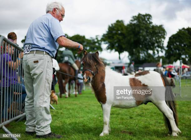A man waits with his Shetland Pony before competing during the 194th Sedgefield Show on August 12 2017 in Sedgefield England The annual show is held...
