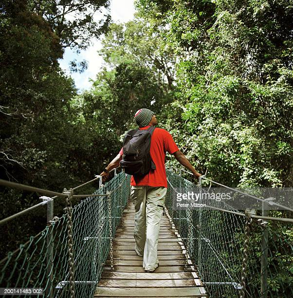 Man walking across slatted suspension bridge, rear view