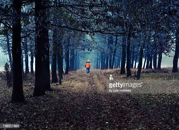 Man walking and dog in forest