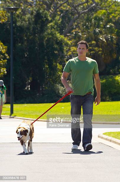 Man walking border collie in park
