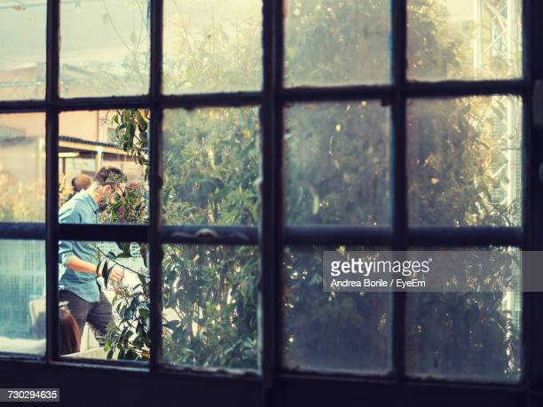 Man Walking By Plants Seen Through Glass Window