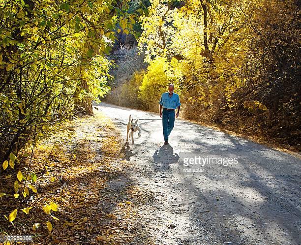 Man Walking Dog, Autumn Scene