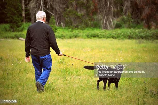 Man walking dog in a field