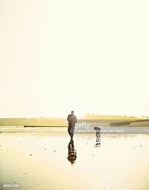 Man walking dog on beach