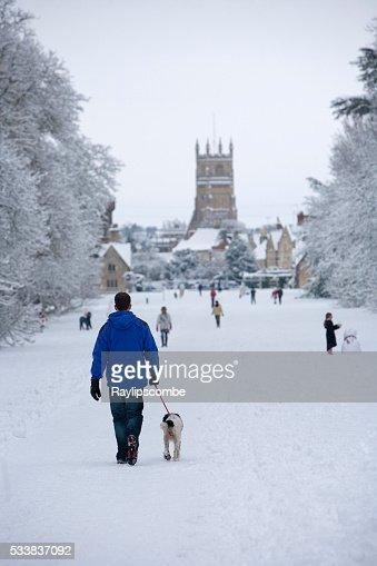 Cirencester Park Dog Walking