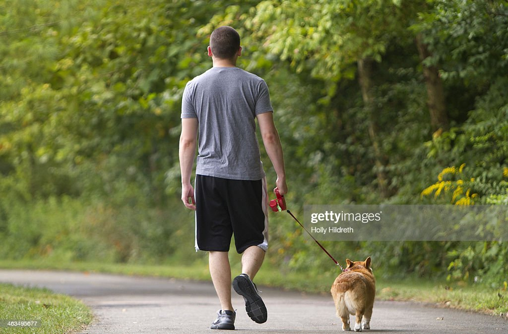 Man walking his dog : Stock Photo