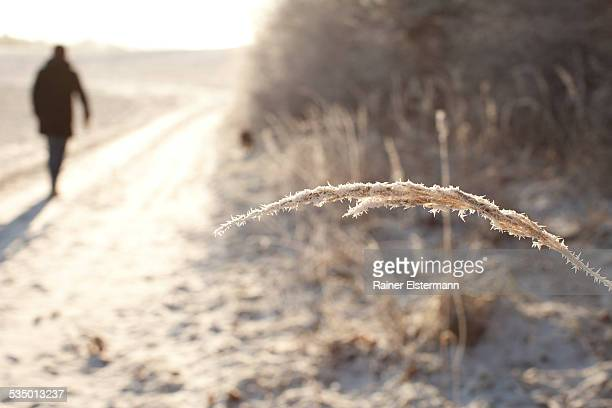 Man walking in snow and ice in bright sunshine