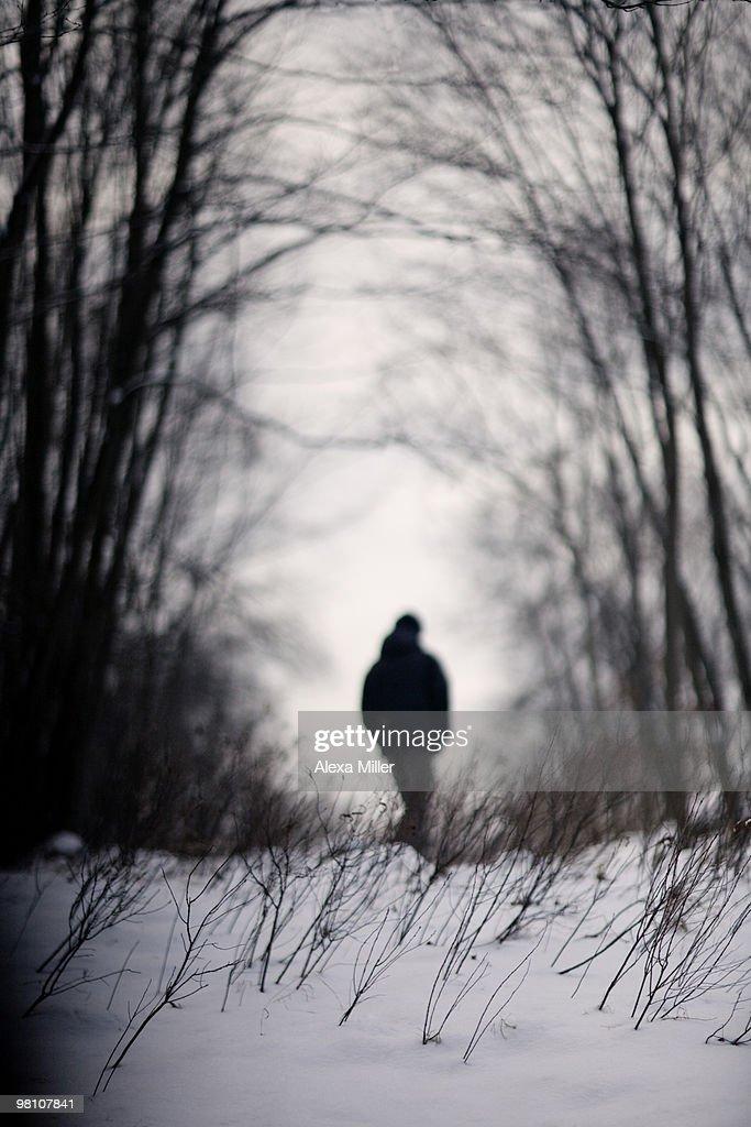 Man walking in snowy woods : Stock Photo
