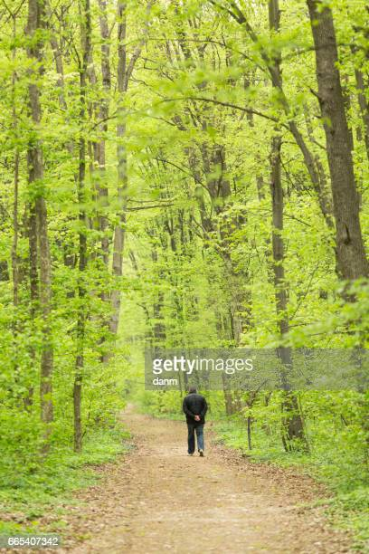 Man walking in the green forest