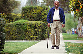 Man walking on path in park