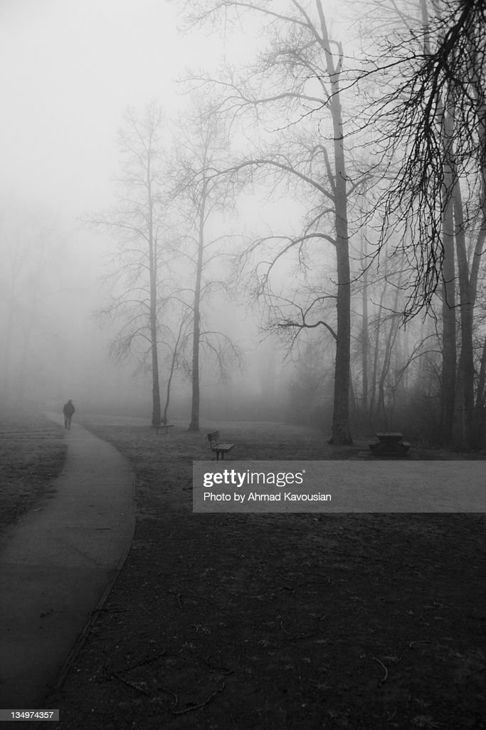 Man walking on path : Stock Photo