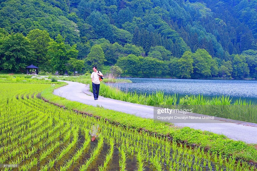 Man  walking  on  path : Stock Photo