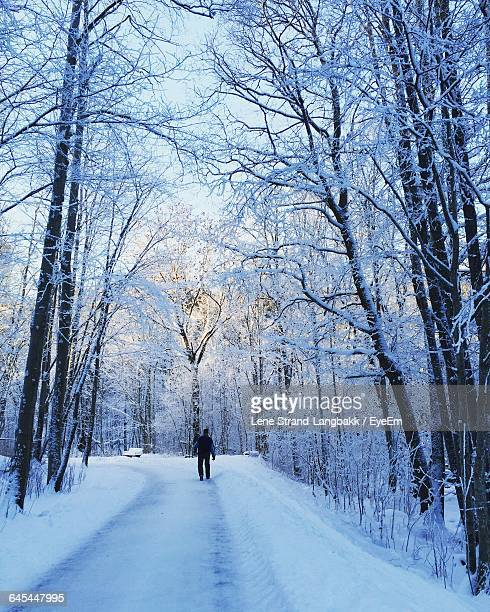 Man Walking On Snow Covered Road Amidst Trees In Forest