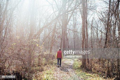 Man Walking Through Bare Forest Into Sun