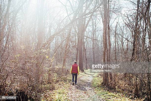 Man Walking Through Bare Forest Into Sun