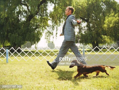 Man walking with Dachshund at dog show : Stock Photo