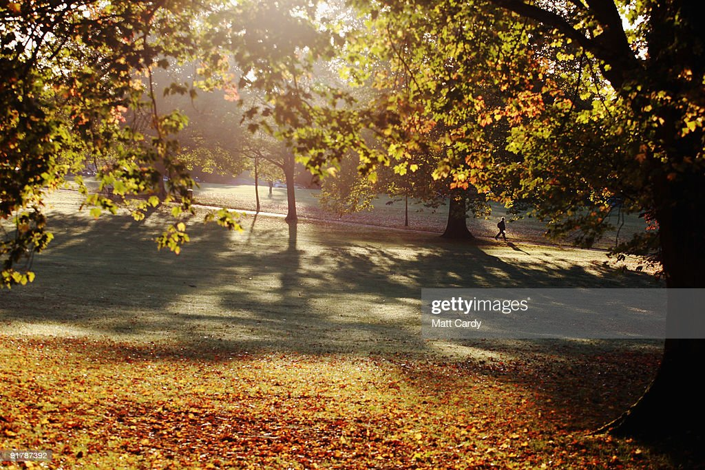 A man walks below trees as the early morning sunlight breaks through leaves that are begining to change colour in Victoria Park on October 12, 2009 in Bath, England. England, particularly in the south, is currently enjoying a spell of dry, fine weather, allowing the begining of the Autumn foliage colours - brought on by shortening daylight hours and cooler weather - to be fully appreciated.