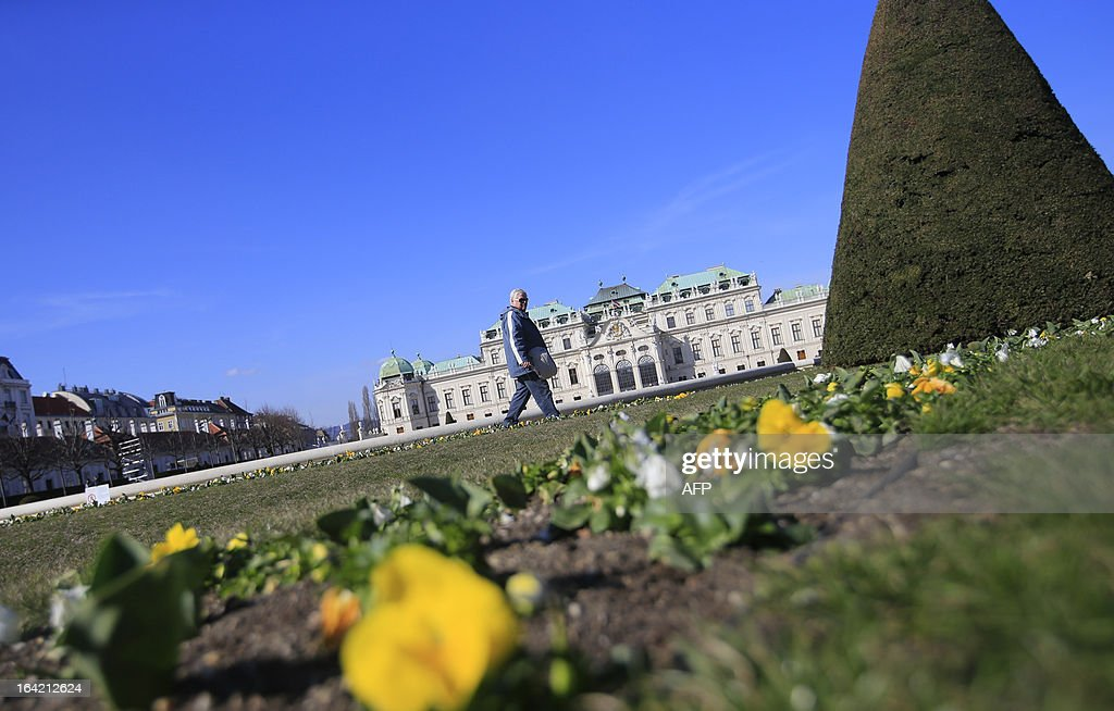 A man walks by as yellow flowers are seen in the gardens of the Belvedere Palace on a clear day in Vienna on March 20, 2013.