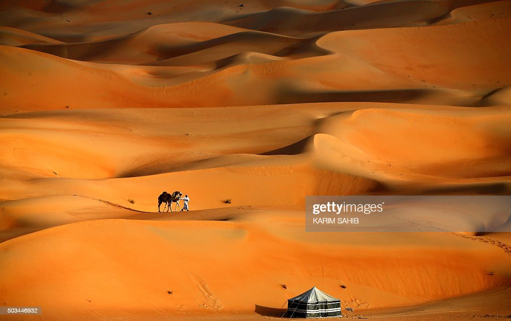 A man walks his camels across the Liwa desert, some 250 kilometres west of the Gulf emirate of Abu Dhabi, during the Liwa 2016 Moreeb Dune Festival on January 5, 2016. The festival, which attracts participants from around the Gulf region, includes a variety of races (cars, bikes, falcons, camels and horses) or other activities aimed at promoting the country's folklore. AFP PHOTO / KARIM